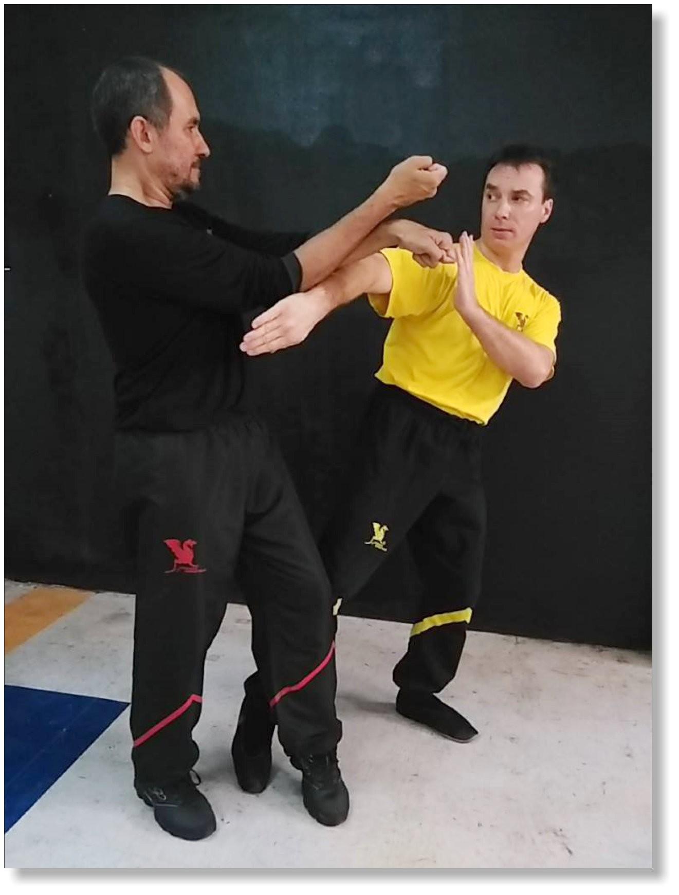 Wing Tsun ist bekannt für seinen Reichtum an ausgeklügelten Handtechniken