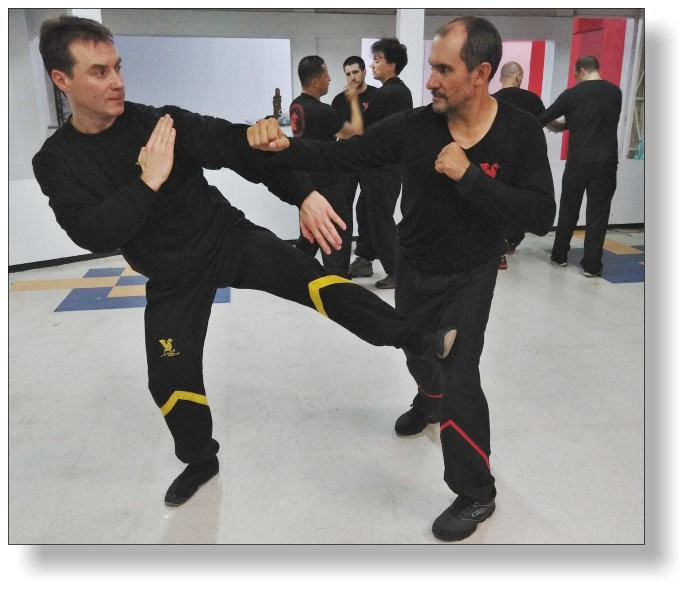 Wing Tsun auf hohem Niveau - Schachspiel für Körper, Geist und Seele