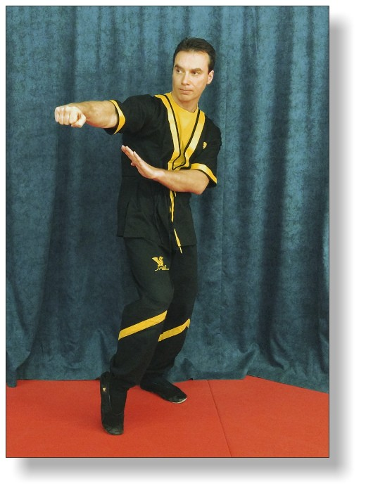 Wing Tsun Meister Martin Dragos - Cheftrainer DRAGOS WING TSUN LEAGUE