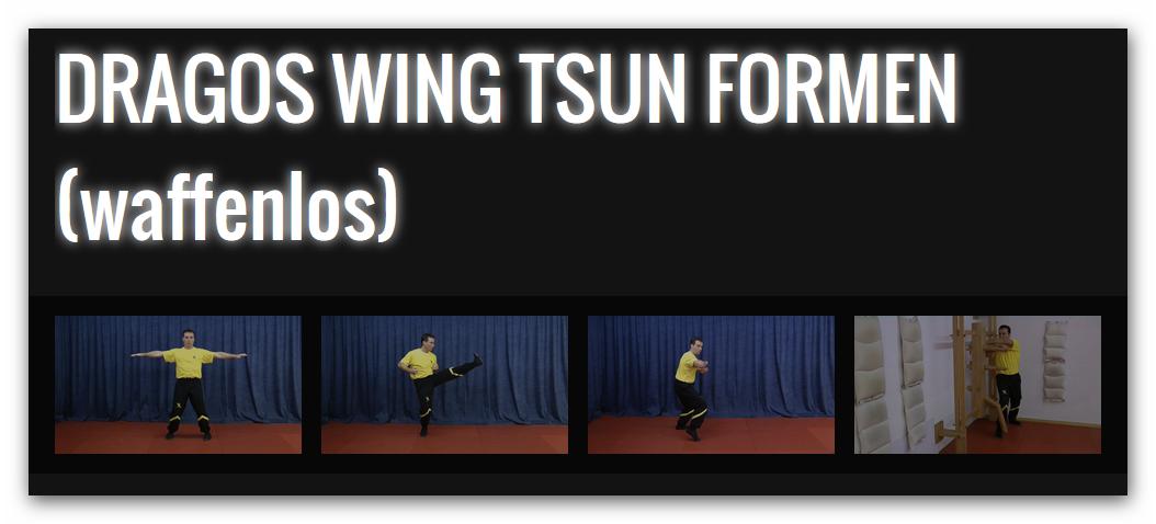 DRAGOS WING TSUN Formentrainig