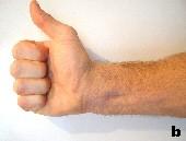 Rollen Sie die Finger wie im Bild gezeigt ein.