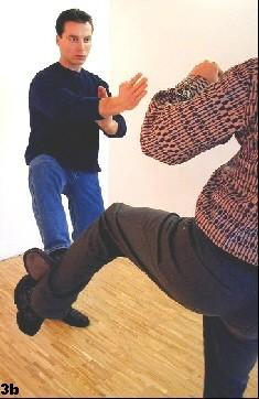 Sifu stoppt den Tritt des Angreifers mit Hilfe eines Tan-Gerk-Stopptritts