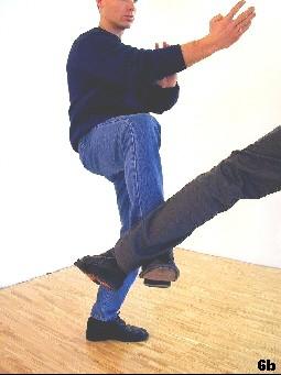 Durch heben des Beines wird die Wucht des Lowkicks minimiert und der Tritt des Angreifers  aufgefangen