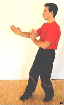 Sifu steht in Man-Sao/Wu-Sao-Position