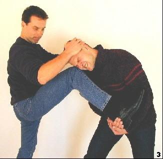 Sifu dreht zieht und dreht den Kopf des Gegners in Richtung Knie. Um dem Kniestoß Kraft zu verleihen, drückt er sich zusätzlich mit den Waden vom Boden weg.
